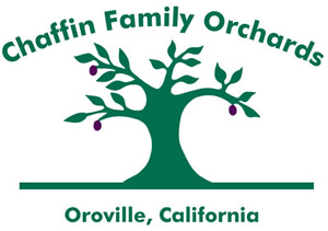 Chaffin Orchards Olive Logo