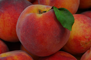 Chaffin Heirloom Peaches