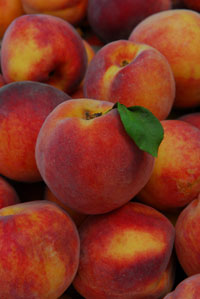 Heirloom Peaches