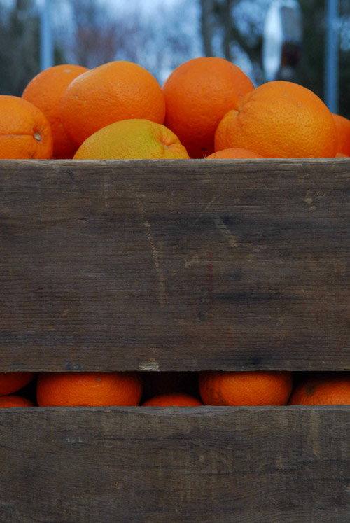 Navel Oranges in farm wooden lug boxes
